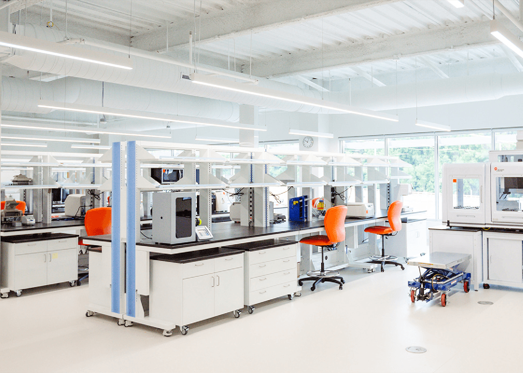 Bright and clean wet-lab space