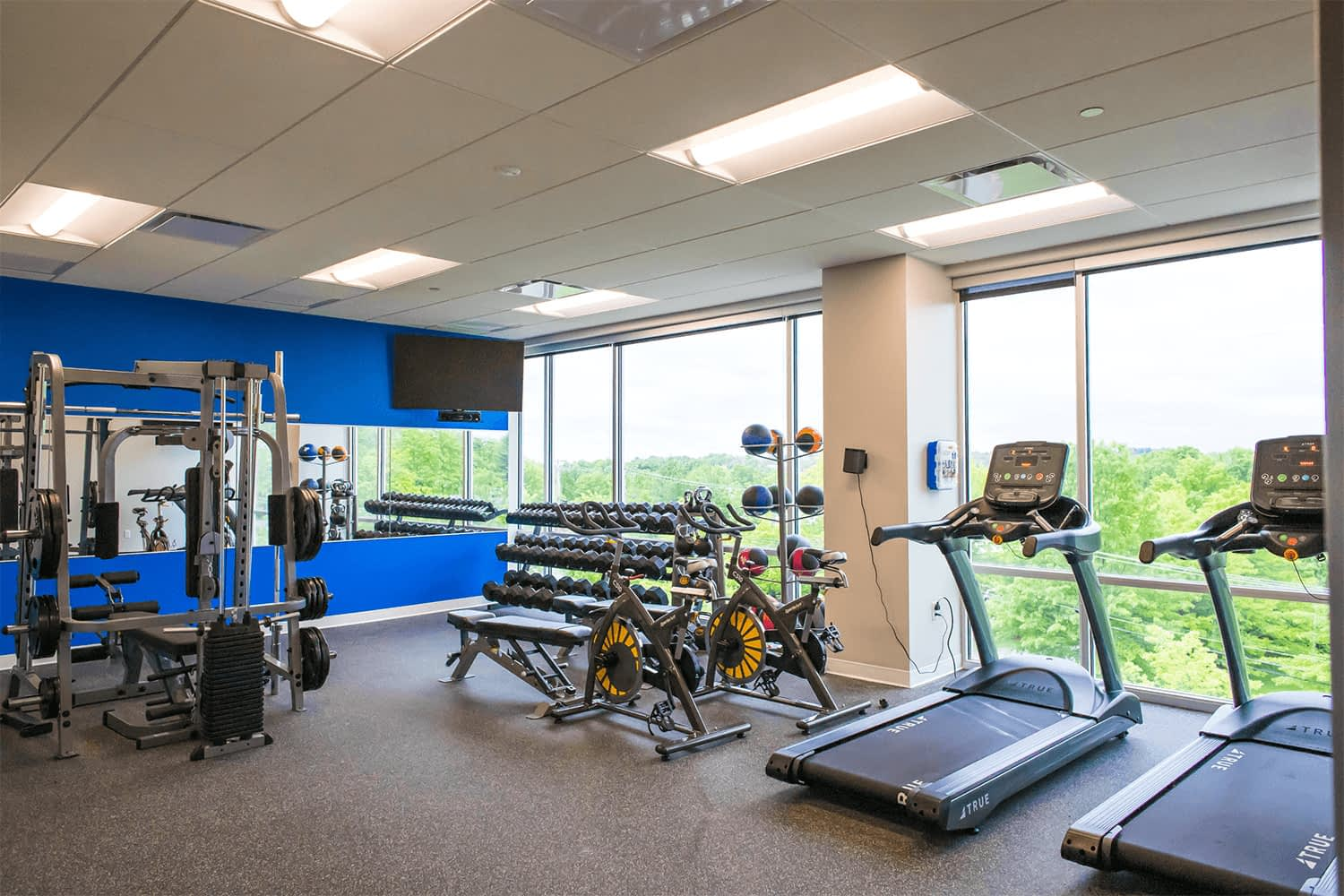 gym with treadmills, and weights, with floor-to-ceiling windows