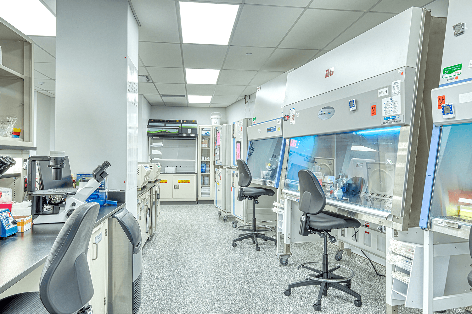 wet lab workspace with desk chairs and lab equipment